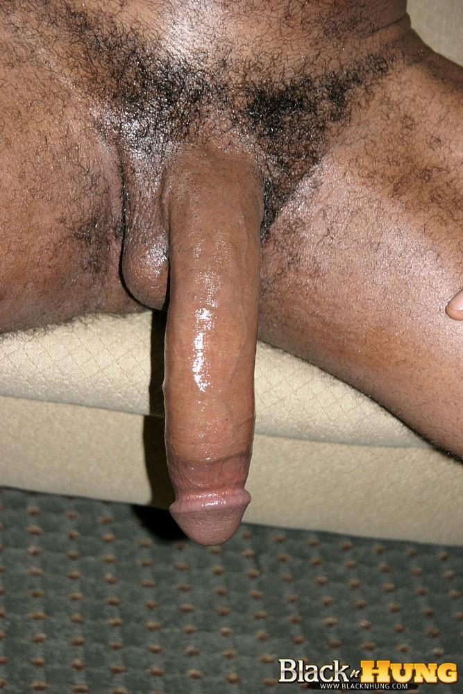 Big hung black dicks